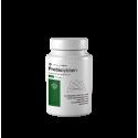 Probiolybben (60 cápsulas vegetales) - Lybben
